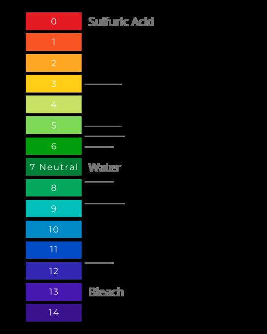 BioVex Disinfectant